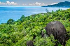 Национальный парк Morne Seychellois - Mahe - Сейшельские островы Стоковые Изображения