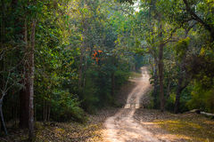 Национальный парк Nao Nam, Phetchabun, Таиланд. Стоковая Фотография