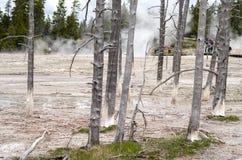 Национальный парк Paintpots Йеллоустона художников, Вайоминг Стоковое Фото