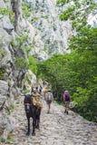 Национальный парк Paklenica стоковое фото rf