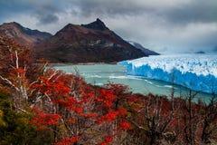 Национальный парк Perito Moreno ледника в осени Аргентина, Патагония стоковая фотография rf