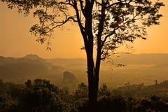 Национальный парк Phu Langka, ландшафт туманных гор и на восходе солнца, Phayao Таиланде Стоковые Изображения RF