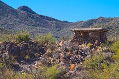 Национальный парк Saguaro Стоковые Изображения RF