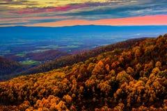 Национальный парк Shenandoah на заходе солнца Стоковое Изображение RF