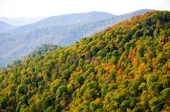 Национальный парк Shenandoah стоковое фото