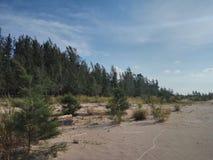 Национальный парк Similajau Стоковые Изображения RF