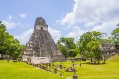 Национальный парк Tikal Стоковая Фотография