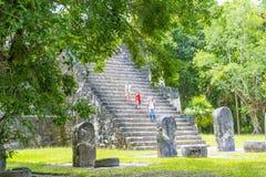 Национальный парк Tikal Стоковое Изображение