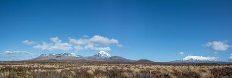 Национальный парк Tongariro ландшафта панорамы, Новая Зеландия Стоковые Фотографии RF