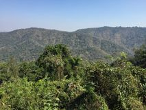 национальный парк yai khao Стоковое фото RF