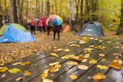 Национальный парк Yedigoller Стоковые Изображения RF