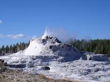 национальный парк yellowstone гейзера замока Стоковое Изображение RF