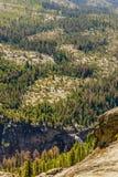 национальный парк yosemite купола половинный Стоковые Изображения RF