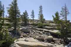 Национальный парк Yosemite Стоковые Изображения