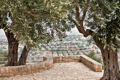 Национальный парк Zippori (Tsipori) Израиль Стоковые Изображения RF
