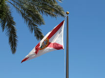 Национальный флаг Флорида Стоковое Изображение
