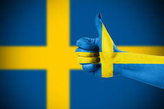 Национальный флаг Швеци Стоковые Изображения RF