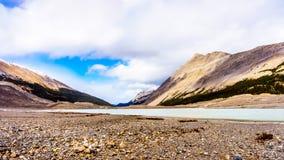 Начало реки Athabasca около своего начала на леднике Athabasca Стоковые Изображения RF