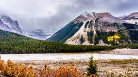 Начало реки Athabasca около своего начала на леднике Athabasca Стоковое Изображение RF