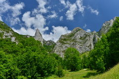 Начало взбираться к запасу Scarita-Belioara от конематки Muntele Стоковая Фотография