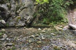 Начало водопада Bigar от Caras-Severin в Румынии Стоковое Изображение
