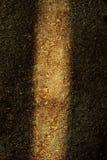 нашивка предпосылки светлая деревянная Стоковое Фото