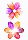 Нашивки акварели, перекрывая текстуры акварели, покрасили декоративную картину, абстрактные цветки, перекрывая повод завода Стоковое Изображение RF
