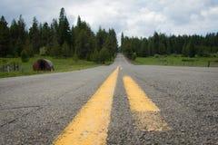 Нашивки в дороге в лесе Орегона стоковое изображение