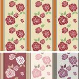 нашивки картины розовые Стоковые Фото