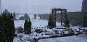 Наши цветки, деревья, трава и снег сада семьи стоковые изображения rf