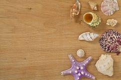 Наяды на конце деревянного стола вверх Seashells на старом деревянном столе с космосом экземпляра для текста стоковые изображения rf