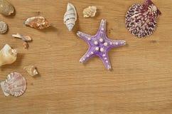 Наяды на конце деревянного стола вверх Seashells на старом деревянном столе с космосом экземпляра для текста стоковые фотографии rf