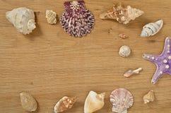 Наяды на конце деревянного стола вверх Seashells на старом деревянном столе с космосом экземпляра для текста стоковые изображения