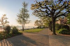 На банках реки Рейна в Майнце, Германия Стоковые Изображения RF