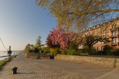 На банках реки Рейна в Майнце, Германия Стоковое фото RF