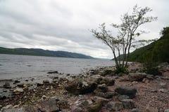 На береге Лох-Несс в Шотландии стоковые изображения
