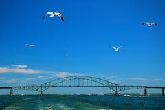 На большом южном заливе Стоковая Фотография