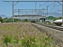 надвигающийся поезд стоковые фотографии rf