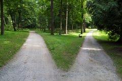 На вилке: 2 дороги в лесе стоковое изображение