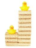 На двух уровнях счастливая утка Стоковые Фото