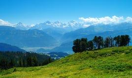 На горе Niederhorn Стоковая Фотография RF
