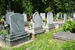 Надгробные плиты в кладбище стоковое фото rf