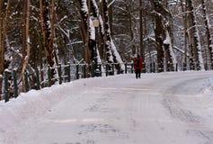 На дороге к замку Peles, Sinaia Стоковая Фотография