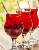 На деревянном лед - холодные стекла напитка с коктеилем ягод Стоковые Фотографии RF