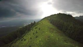 Над лесом горы видеоматериал