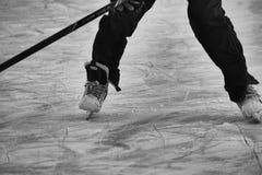На замороженном пруде Стоковое фото RF