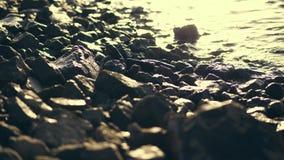 На заходе солнца, прибой, конец-вверх, каменное побережье, волны морской воды на каменном пляже сток-видео