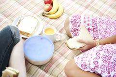 надземные сандвичи пикника Стоковое Изображение RF