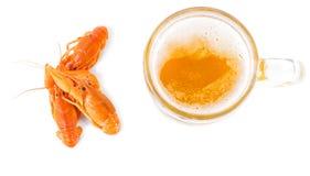 Сервировка пива и креветок Стоковая Фотография