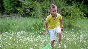 На зеленом цвете, лужайка стоцвета, мальчик с сетью, пробует уловить бабочек, кузнечиков Лето, outdoors, в лесе акции видеоматериалы